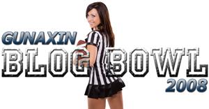 Blog Bowl 300