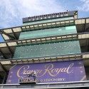 thumbs 2014 crown royal 400 brickyard 51