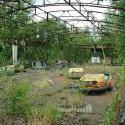 abandoned-amusement14