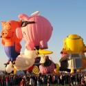 thumbs balloon fiesta albuquerque 41