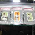 thumbs black swamp find cards 7