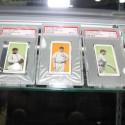 black-swamp-find-cards-7