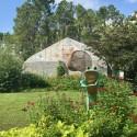 thumbs brookgreen gardens 4