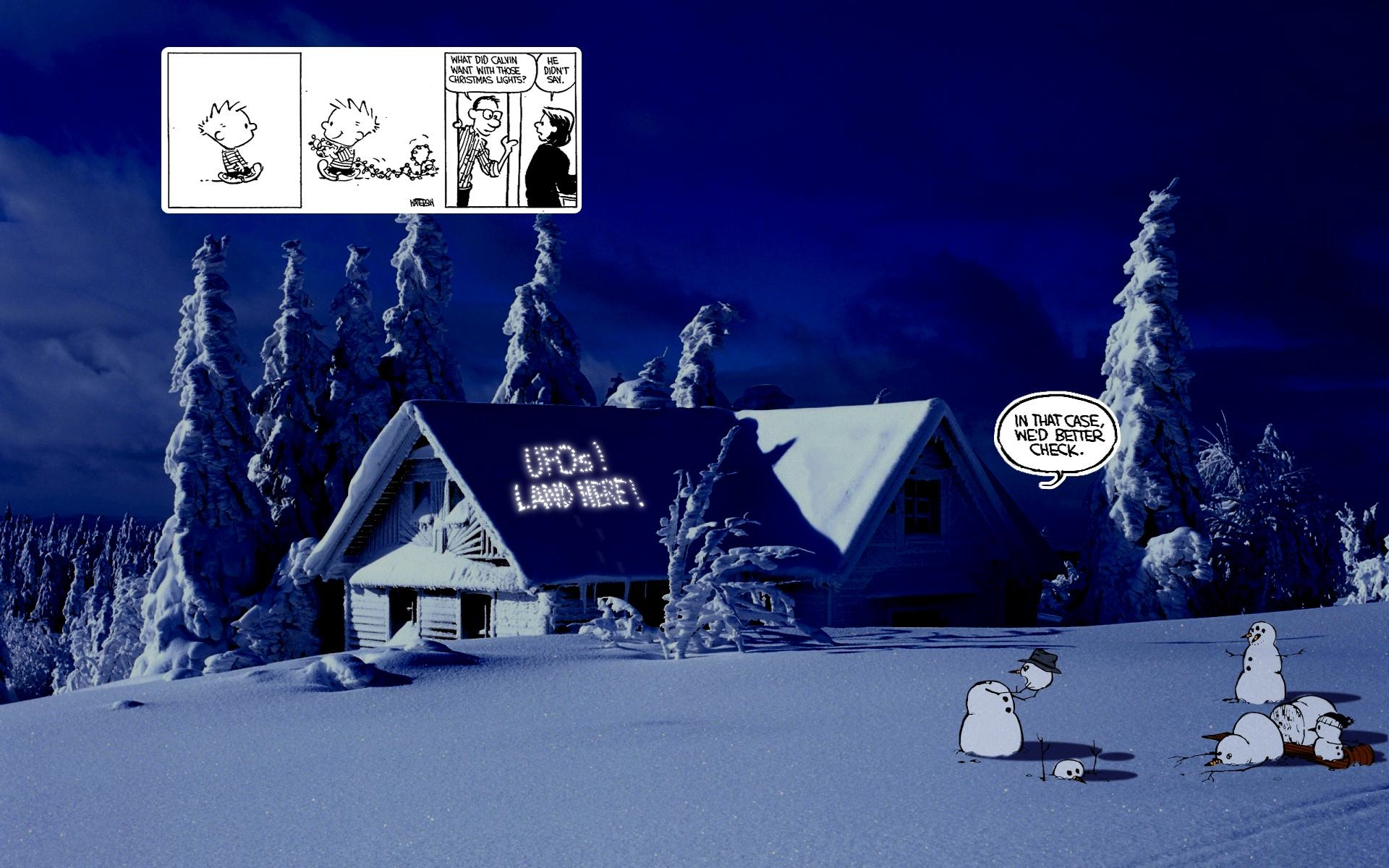 Calvin And Hobbes In The Real World