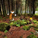 calvin-hobbes-real-world-photos-12