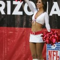 arizona_cardinals_girls-36.jpg