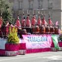 cherry-blossom-parade-12