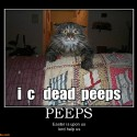 peeps-peeps-easter-demotivational-posters-1331948038