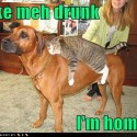 thumbs drunk pets 022