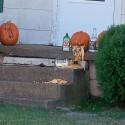 thumbs drunk pumpkin 06