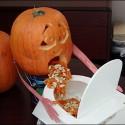 drunk_pumpkin_4.jpg