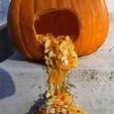 thumbs drunk pumpkin 5