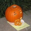 thumbs puking pumpkins 18
