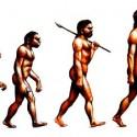 evolution_funny-06