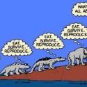 evolution_funny-22