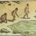 evolution_funny-25