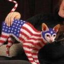 american-flag-humor-05