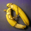 fruit-24