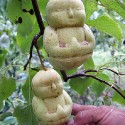 thumbs fruit 32