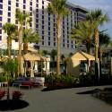 thumbs hard rock hotel biloxi pool 4