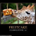 thumbs holiday fruitcake 039