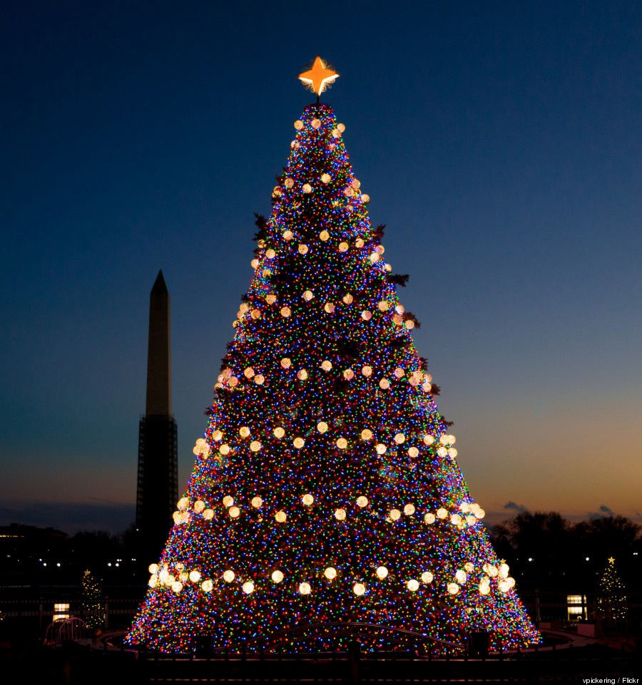 Washington Dc National Christmas Tree