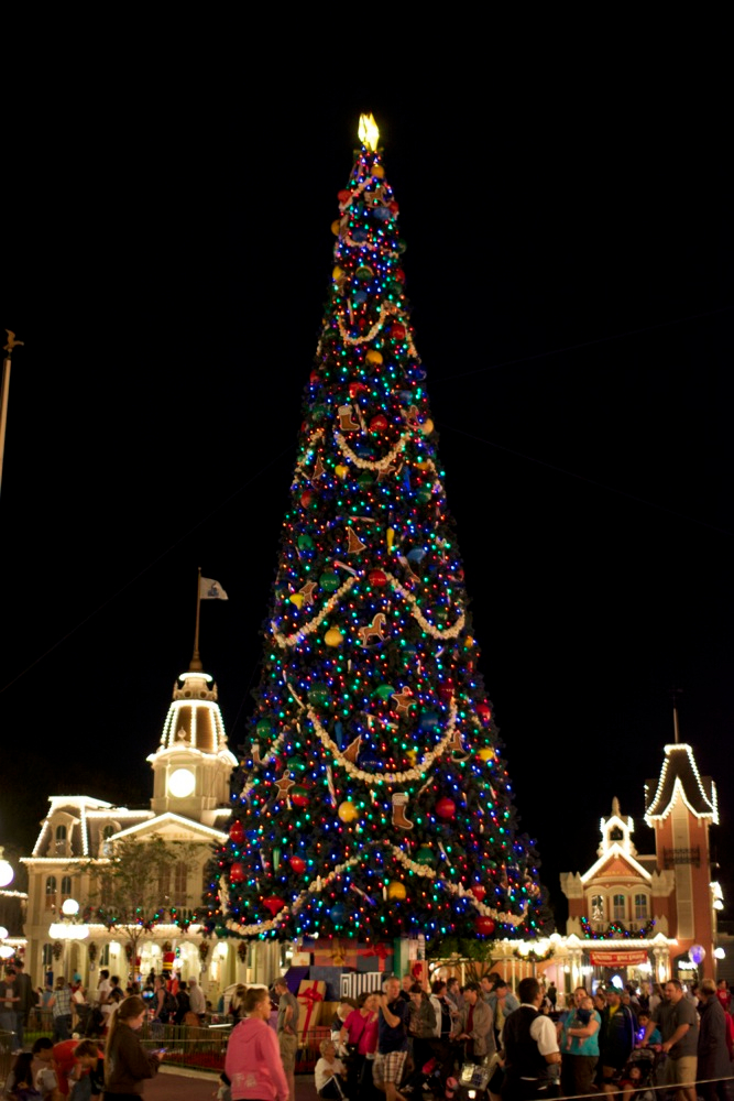 Globe Christmas Tree Lights