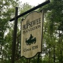 hopsewee-plantation-2