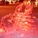 ice-scorpion