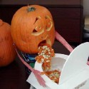 pumpkin_photos_001