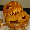 pumpkin_photos_004