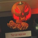 pumpkin_photos_017