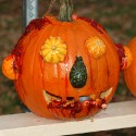 pumpkin_photos_020
