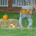 pumpkin_photos_023