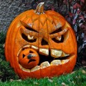 pumpkin_photos_024