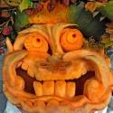 pumpkin_photos_026