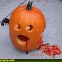 thumbs pumpkin photos 033