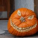thumbs pumpkin photos 037
