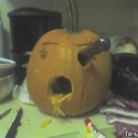 thumbs pumpkin photos 038