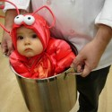 thumbs funny costume ideas baby lobster wallpaper