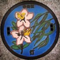 thumbs japanese manhole covers 34