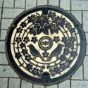 thumbs japanese manhole covers 4