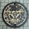 thumbs japanese manhole covers 4