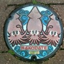thumbs japanese manhole covers 48