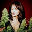 thumbs ganja girls 31