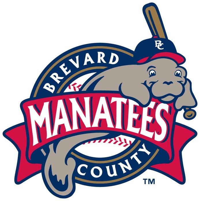 80 fun minor league baseball logos thumbs minor league baseball logo 16 sciox Image collections