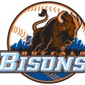minor-league-baseball-logo-15