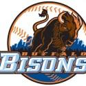thumbs minor league baseball logo 15