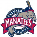 minor-league-baseball-logo-16