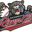 thumbs minor league baseball logo 21
